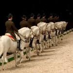 Escuela Española de Equitación del Palacio Hofburg