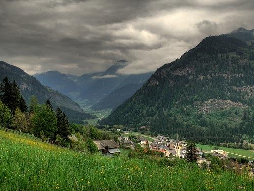 Flora y Fauna Austria