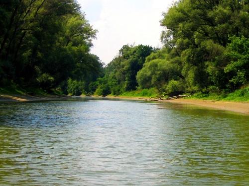 Danubio Auen