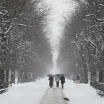 Viajar a Viena en invierno