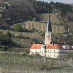 Gumpoldskirchen, para los amantes del vino