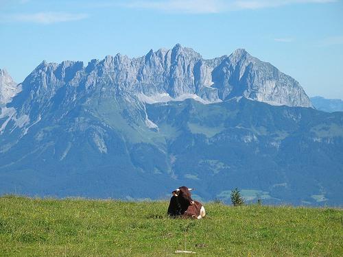 Montañas austriacas