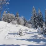 Senderismo invernal por Vorarlberg