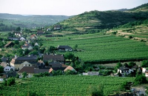 Valle de Kamp